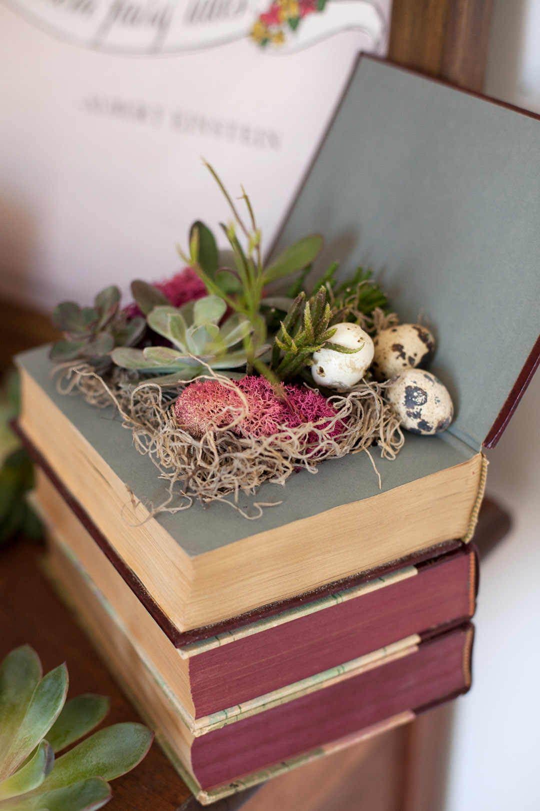 books overflowing with succulents and moss