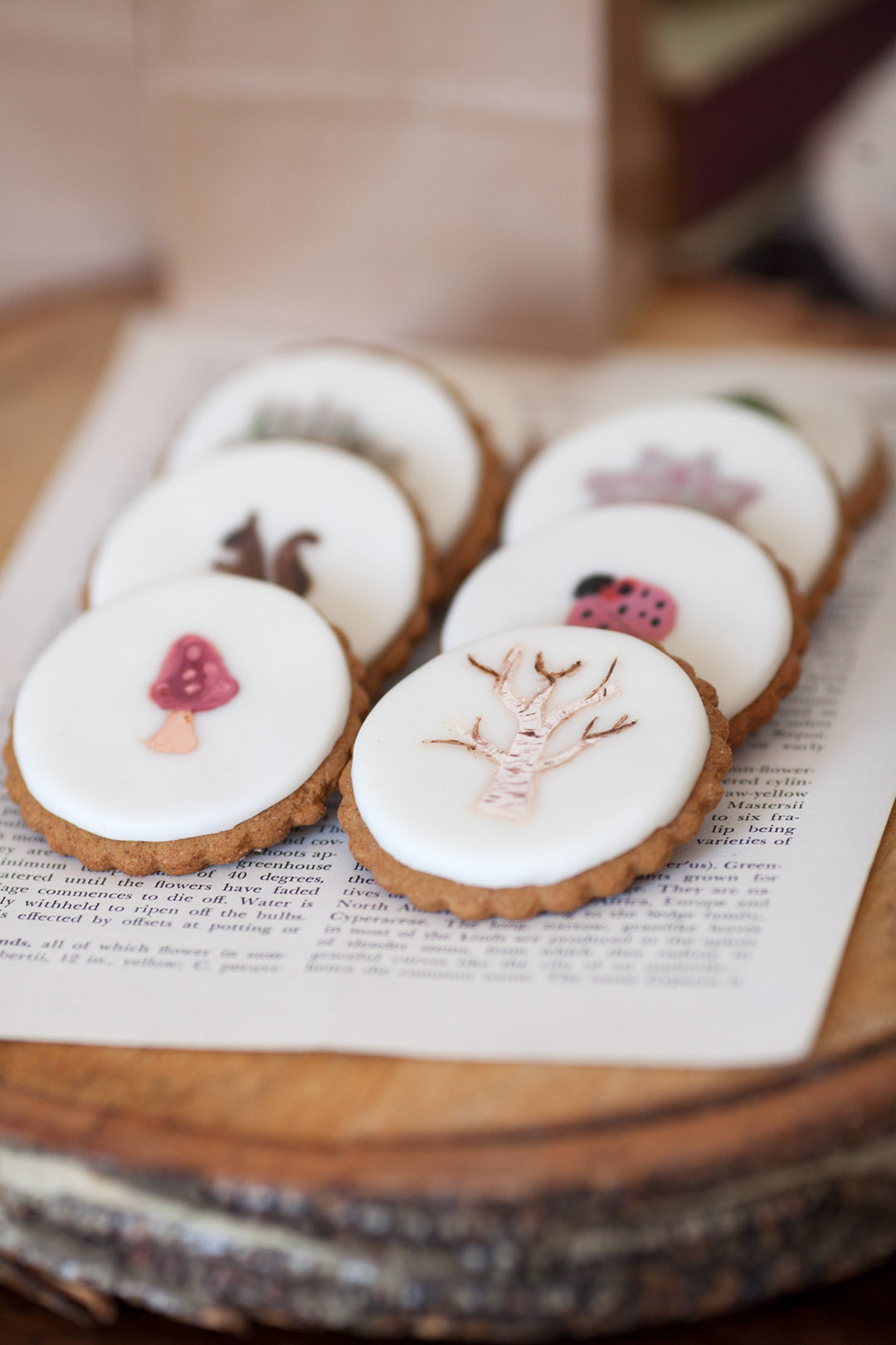 nature inspired cookies