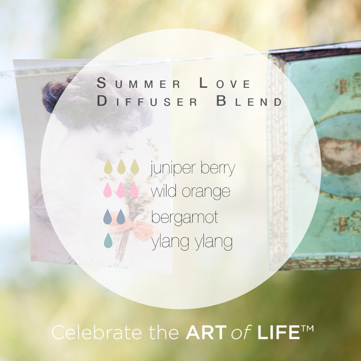 Summer Love Diffuser Blend | Celebrate the ART of LIFE